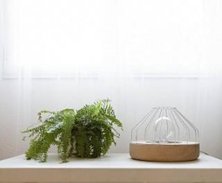 Diseño de mobiliario, proyecto Xilo